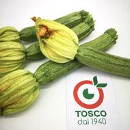 Zucchina chiara con fiore